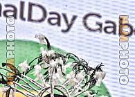 GABON NATIONAL DAY