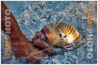 Swimming Cup 2014