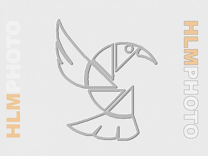 ARONAMEN 2021 - ARRIVI